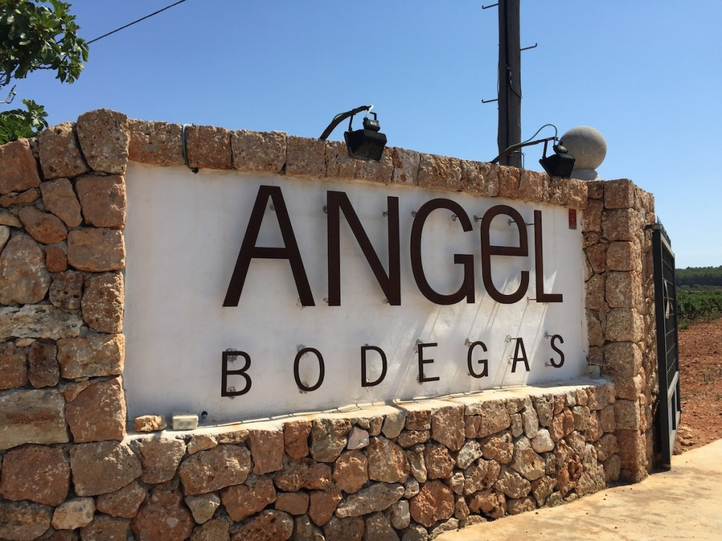 Angel Bodegas