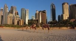 FMA Dubai
